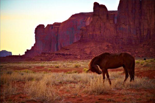 Monument Valley - Navajos avec cheval Destination Amériques