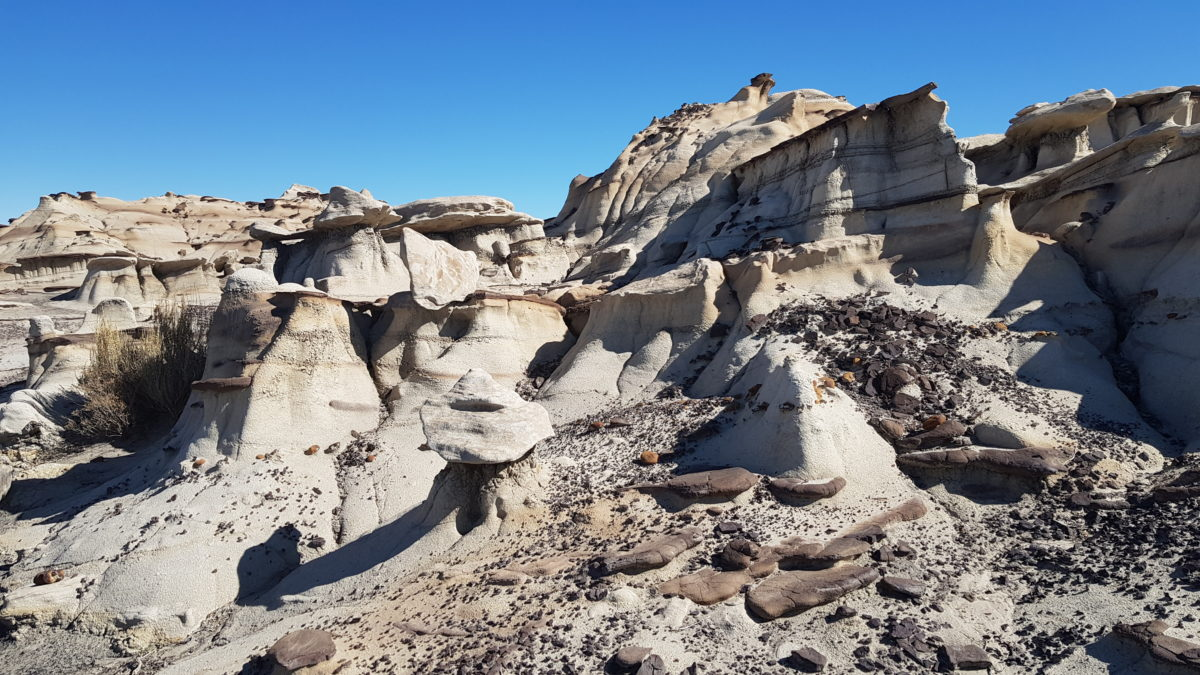 Nouveau Mexique - Bisti Badlands