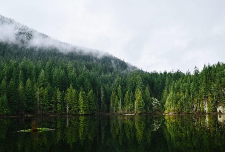 Colombie-Britannique et Alberta