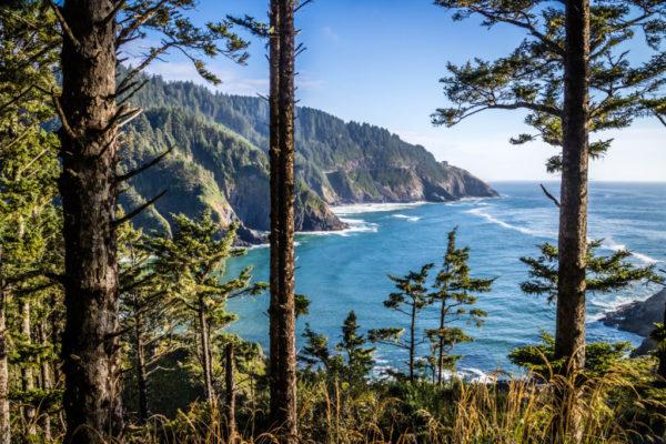 Oregon's Coast Scenic Drive