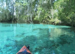 Florida - Crystal River - Three Sisters Springs